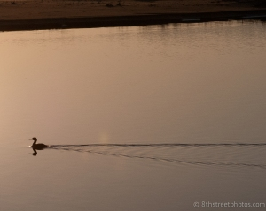 gliding reflection