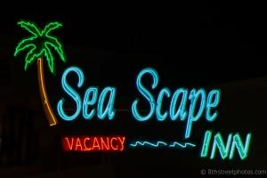 Neon Safari - Sea Scape - 20140706-BER_4370 -_