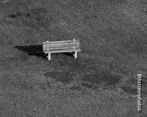 lonely bench - 20141227-BER_1556
