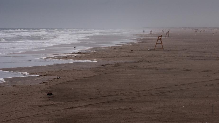 stormy day  - DSC_0050