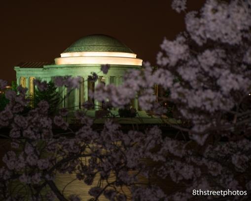 Cherry Blossoms - Sunset_20160325__JBB9900