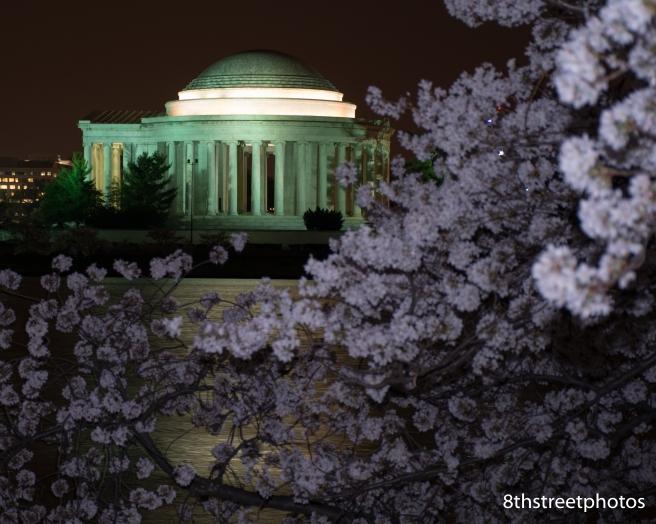 Cherry Blossoms - Sunset_20160325__JBB9904