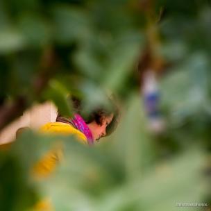 HBW - Botanic Garden Field Trip_20160518__JBB1048
